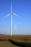 Wind Farm. In Central Illinois Royalty Free Stock Photography