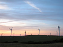 Wind farm. At sunset Royalty Free Stock Images