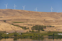 Wind Farm Along the Columbia River. Spanning 30 miles and offering a capacity of 500 megawatts, Windy Flats development is one of the largest wind energy Royalty Free Stock Photo