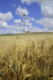 Wind farm and barley Royalty Free Stock Photos