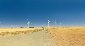 A Wind Farm with blue sky in California. Stock Photography