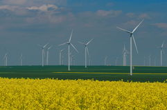 Wind farm and or canola field. Spring flowers background Royalty Free Stock Images