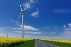 Wind farm and or canola field. Spring flowers background and blue sky Stock Photo