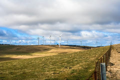 Wind turbine on cattle farm Stock Photography