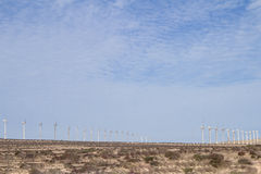 Wind farm, El Jable, Fuerteventura Royalty Free Stock Image