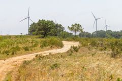Wind farm, forest and dirty road in Vila do Bispo. Algarve, Portugal Royalty Free Stock Photos