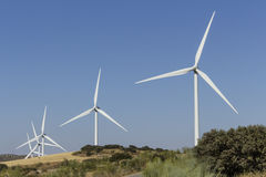 Wind farm in a Mediterranean shrubland ecosystem Royalty Free Stock Images