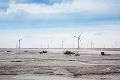 Wind farm in mud flat Stock Images