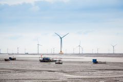 Wind farm in mud flat Royalty Free Stock Images