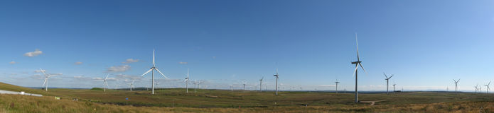 Wind farm panorama with blue sky. Large number of modern wind turbines on a wind farm in Scotland, UK, Europe. Panorama taking in around 180 degrees Royalty Free Stock Image