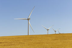 Wind farm between pastures Royalty Free Stock Images