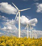 Wind farm with rape field Royalty Free Stock Photography