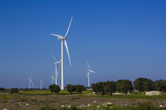 Wind farm rural. Wind farm with olive trees Stock Photo