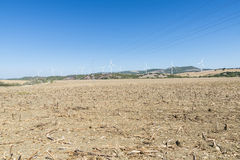 Wind Farm in Spain Royalty Free Stock Image