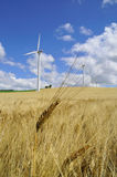Wind farm in summer Stock Images