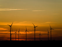 Wind farm at sunset Stock Image