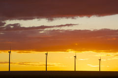 Wind Farm in Sunset Royalty Free Stock Photography