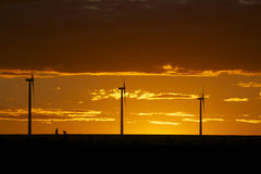 Wind Farm in Sunset Stock Photography