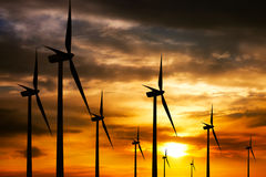 Wind farm at sunset Stock Photography