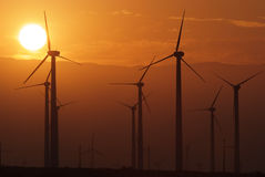 Wind farm during sunset Stock Photo