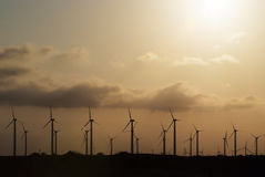 Wind farm during sunset Stock Photography