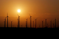Wind farm during sunset Stock Images