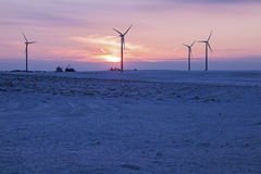 Wind Farm at sunset Stock Images