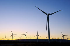 Wind Farm during sunset Stock Image