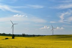 Wind power plant in a field of blooming yellow rape on a background of blue sky and white clouds royalty free stock photos