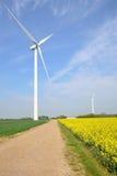 Wind farm turbines in field Royalty Free Stock Image