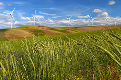 Wind farm turbines white on hill contrast green grass and blue sky, usa Royalty Free Stock Images