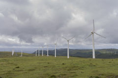 Wind farm. Stock Photo