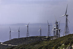 Wind farm of which clean energy is obtained Royalty Free Stock Image