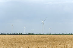A wind farm in the wide spread field Royalty Free Stock Photo