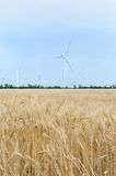 A wind farm in the wide spread field Stock Photography