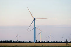 A wind farm in the wide spread field Royalty Free Stock Image