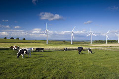 Wind Farm Yorkshire Royalty Free Stock Photos
