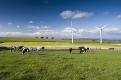 Wind Farm Yorkshire Stock Photography