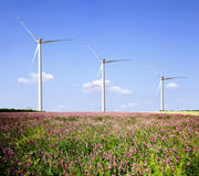 Wind farms . Royalty Free Stock Photo