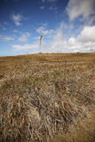 Wind farms along the North shore coastline of the big island of Stock Photography