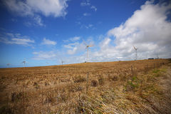 Wind farms along the North shore coastline of the big island of Royalty Free Stock Images