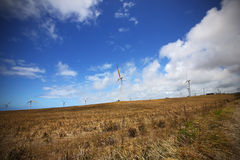 Wind farms along the North shore coastline of the big island of Stock Photos