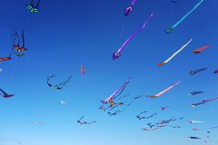 Wind festival at Bondi beach, Sydney, Australia on 10 September 2017. Colorful kites in the sky as famous event at Bondi beach, Sy Royalty Free Stock Photography