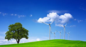 Wind Field Stock Images