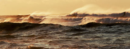 Wind geblazen golven tijdens orkaanhermine Stock Afbeelding
