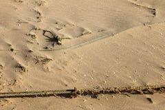 Wind geblazen zand Royalty-vrije Stock Foto's