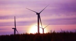 Wind gedreven elektrische installatie Royalty-vrije Stock Foto