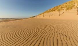 Wind-gemaakte patronen bij het strand stock fotografie