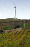 Wind generator on hilltop. A wind power generator or turbine on top of a grassy hill stock photos