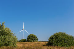Wind generator spinning against the backdrop of the forest line. Stock Photos